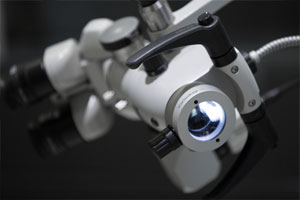 Focus on <strong>the microscope</strong>